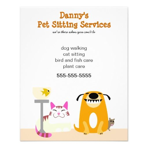 pet sitter s promotional flyer pet sitter grooming business
