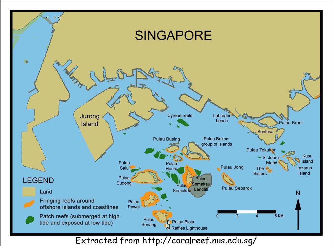 Cool Pulau Semakau Inter Tidal Walk Vicinitysights Pic Pulau Semakau Singapore Johns Island Reef
