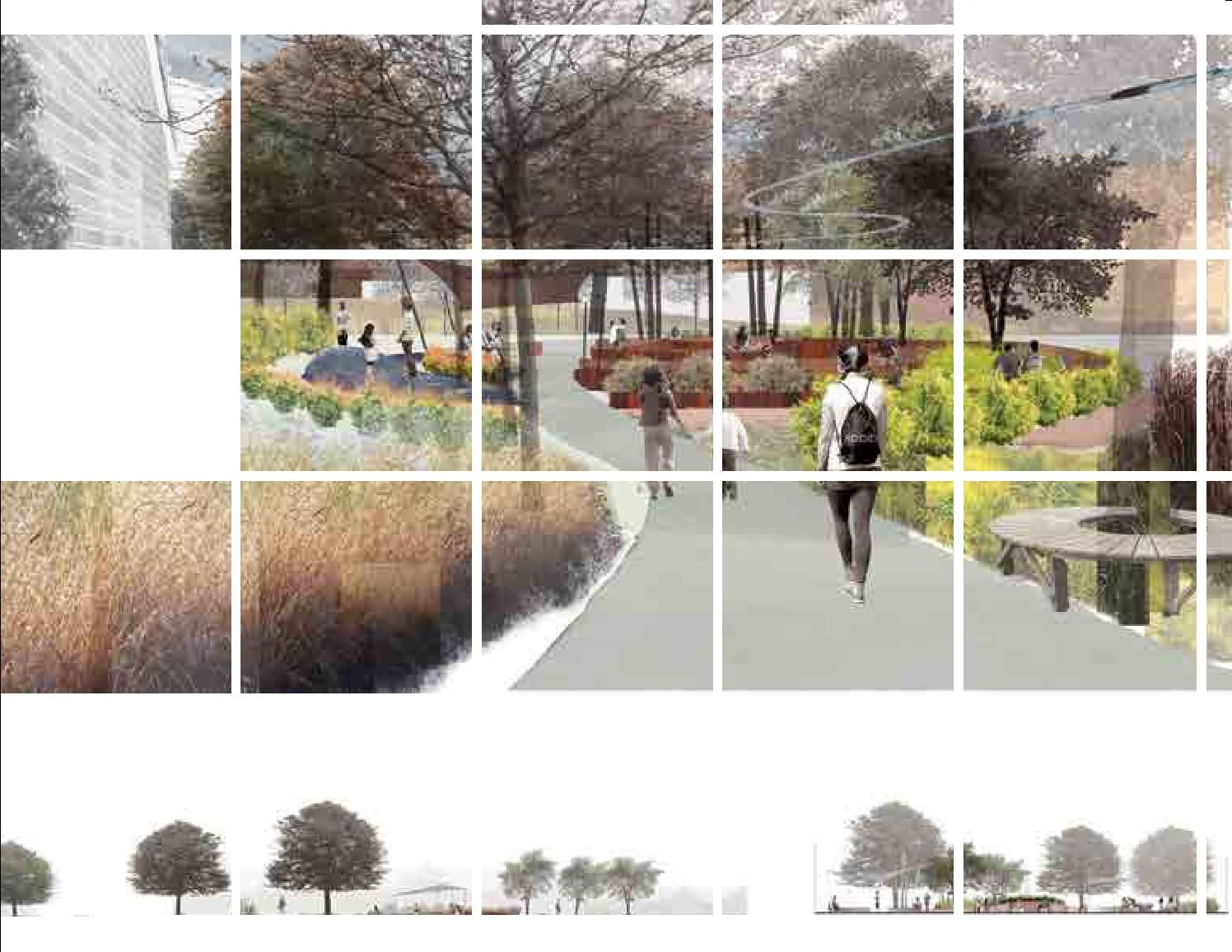 Landscape Architecture Portfolio Landscape Architecture