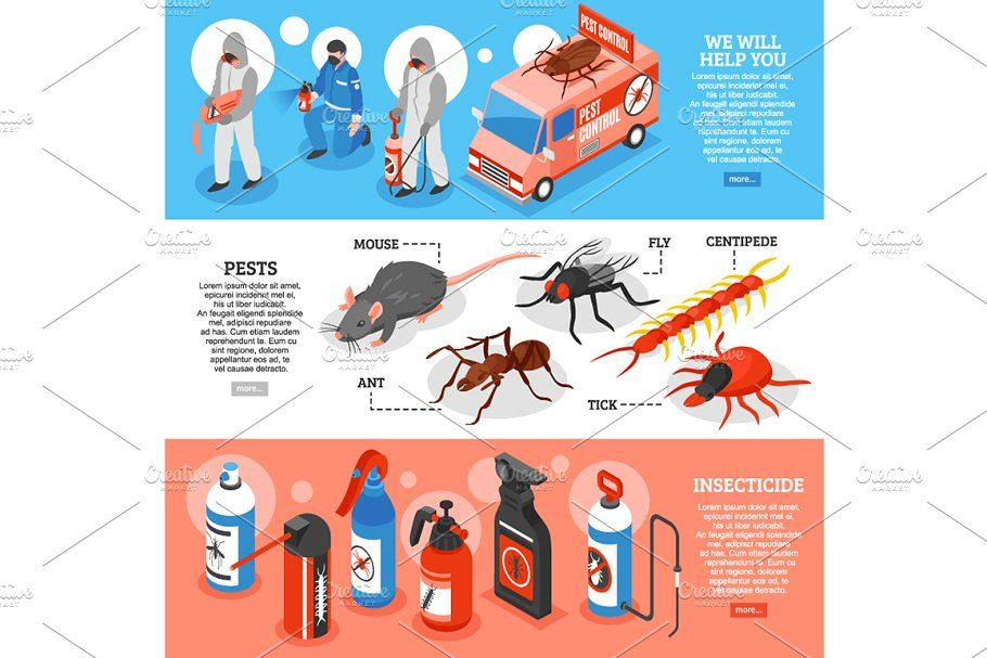 Pest Control Isometric Set Ber