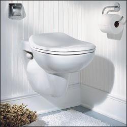 Porcher Concealed Tank Toilet 42080 42080 Traditional