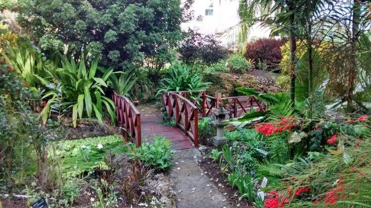 Andromeda botanic gardens barbados volunteer with images