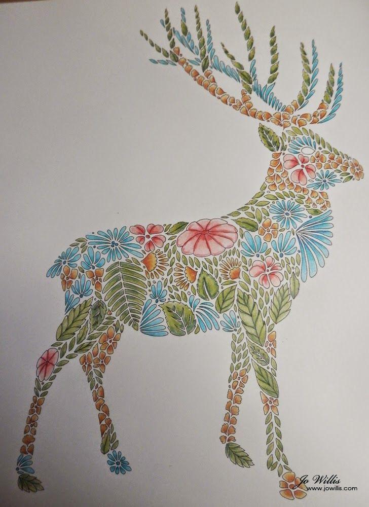 Coloring Ideas Deer Animal Kingdom Colouring Book Millie Marotta Coloring Book Millie Marotta Animal Kingdom