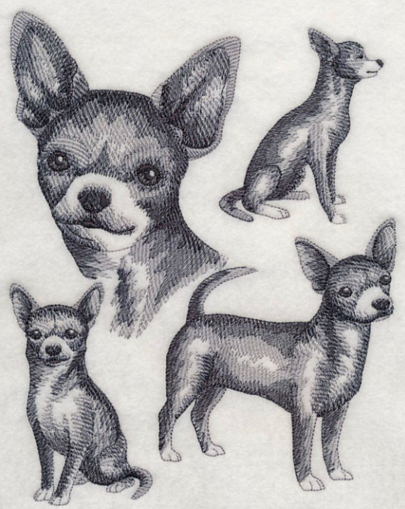 Chihuahua Embroidered Sweatshirt Shirt Machine Embroidery