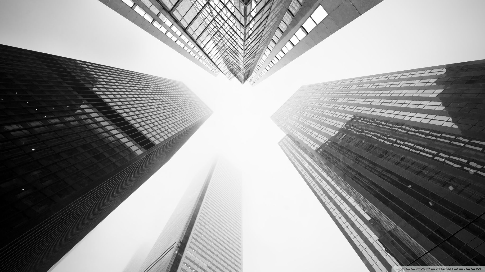 Toronto Skyscrapers Black And White 4k Hd Desktop Wallpaper For White Background Hd Black And White Wallpaper White Wallpaper