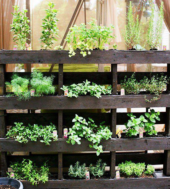 7 idee per realizzare un giardino verticale in maniera semplice ed ...