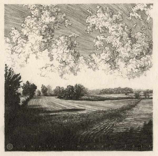 """Two Fields,"" 5 x 5 in, Pencil, 2013 by Taylor Mazer, via Behance"