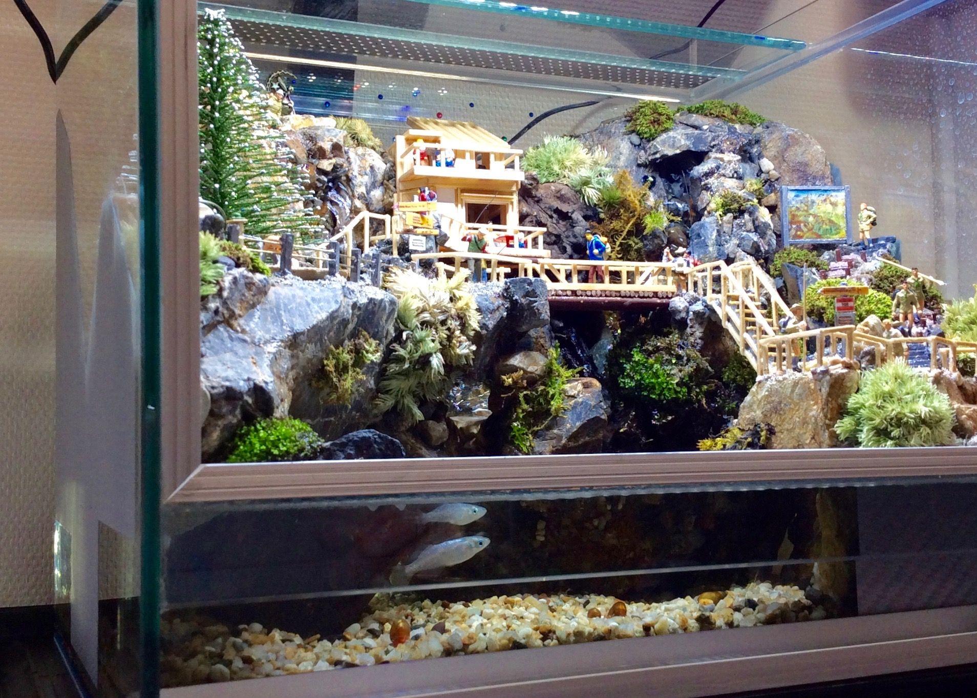 Moss Terrarium 俺の渓谷 Vol 06 改 Diorama Biotope ジオトープ ロッジ Ver 岩窟 コテージ Biotope Waterfall Aquascape Terrarium Plants Aquarium