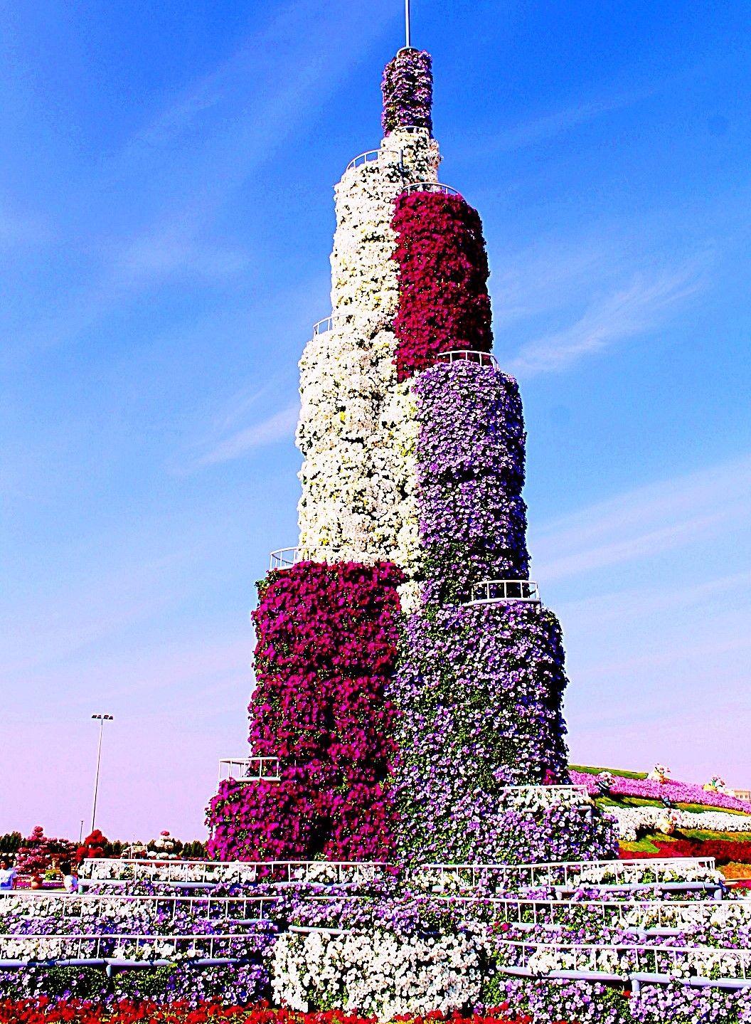 Miracle Garden Dubai in 2020 Miracle garden, Million