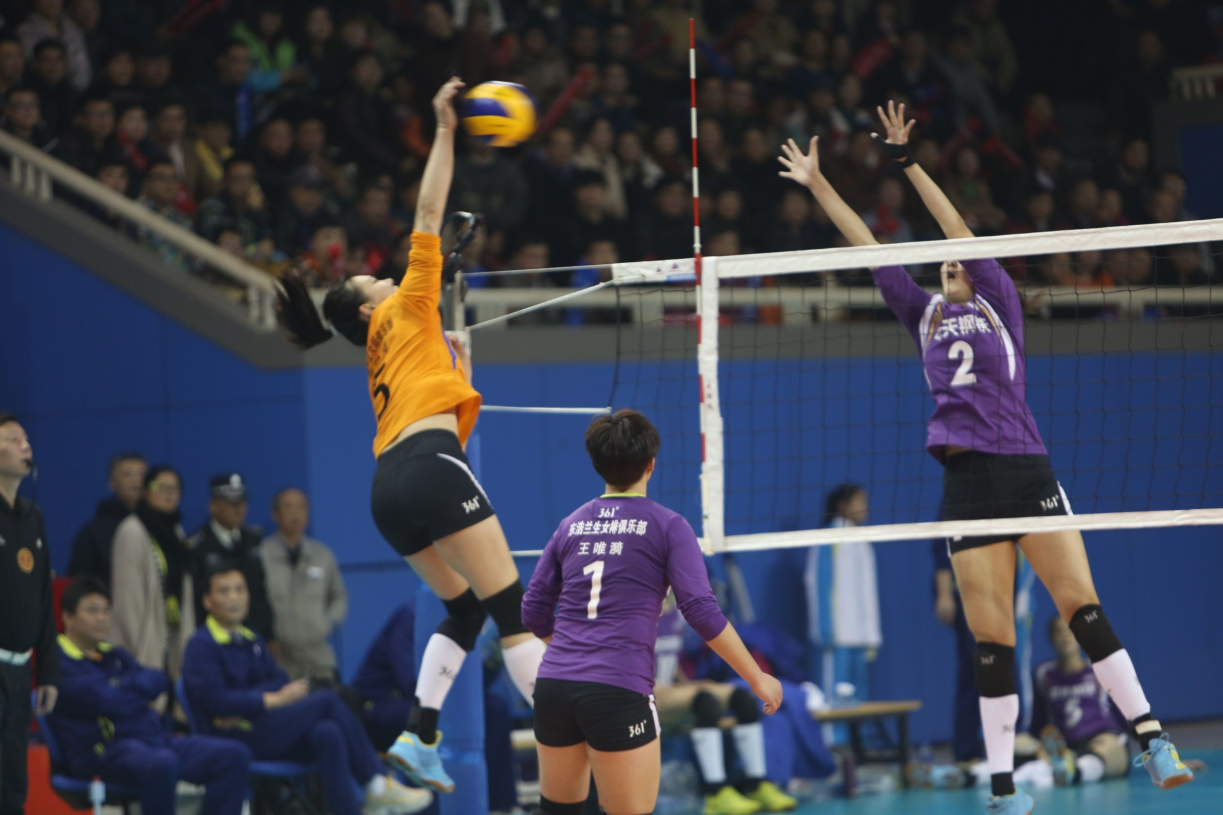 Ebls 2014 2015 Chinese Women S Volleyball League Women Volleyball Volleyball Wrestling