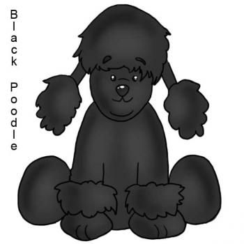How to Draw a Black Poodle, Step by Step, Webkinz,