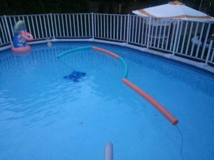 Pin By Cristen Glende On For The Home Pool Pool Time Pool Care