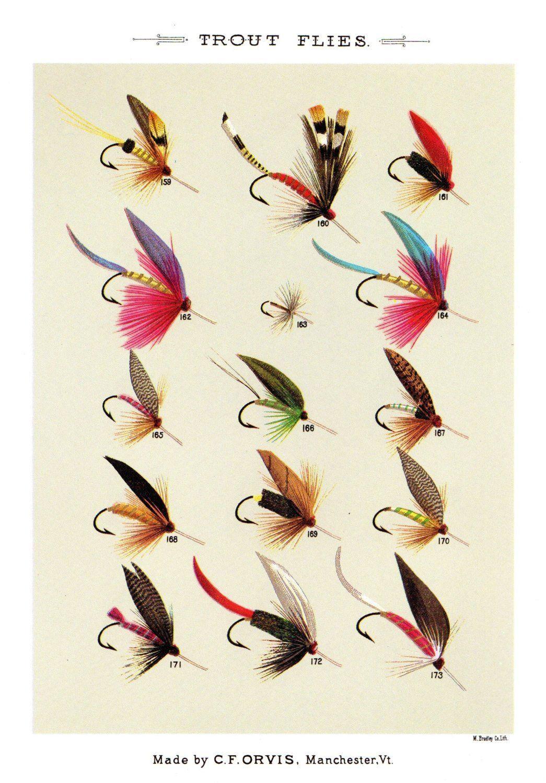 Vintage Fly Fishing Print Trout Flies Print Beach House ...