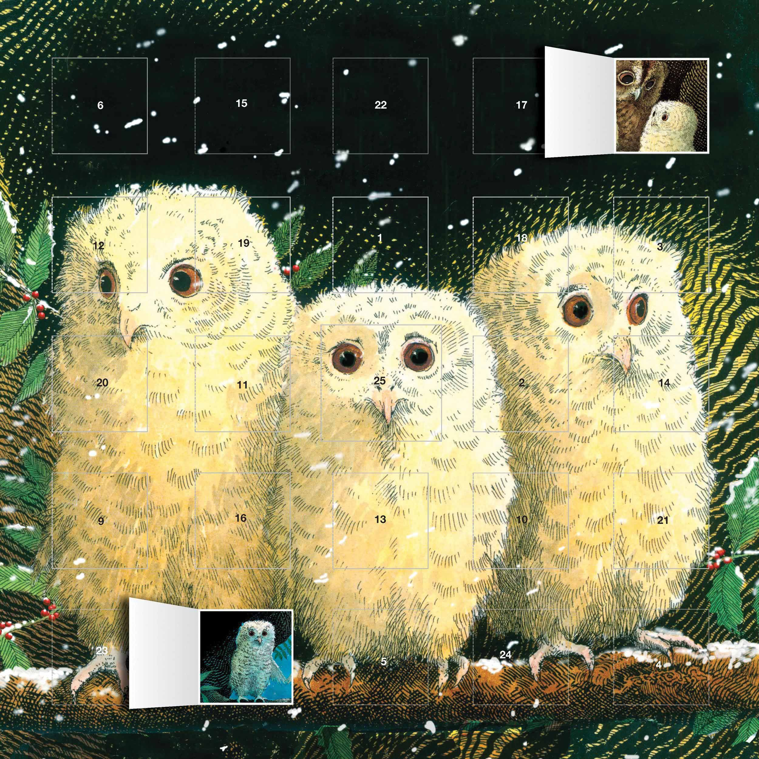 Owl Babies Advent Calendar The Musketeers Baby advent