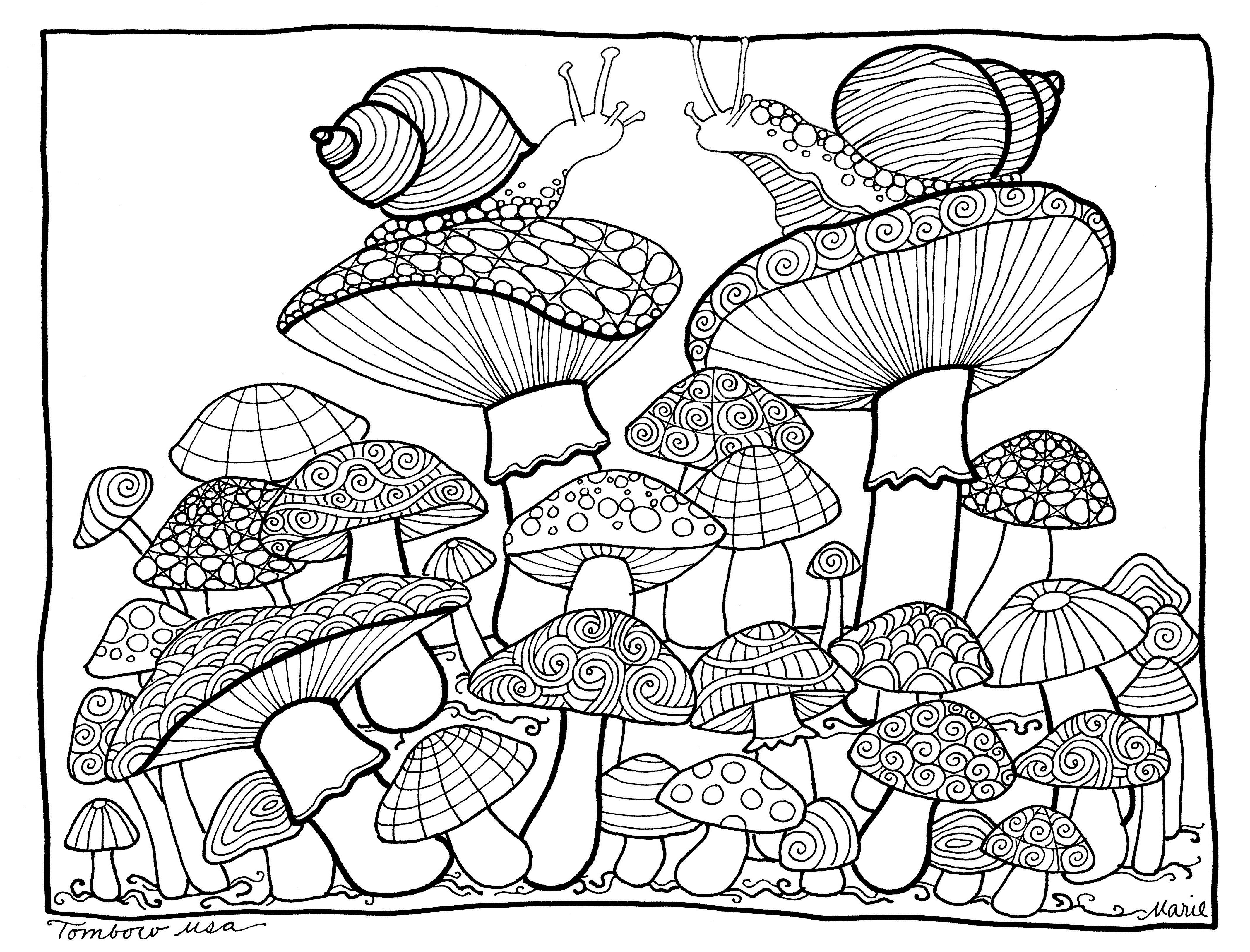 Mushrooms Coloring Page By Tombow USA