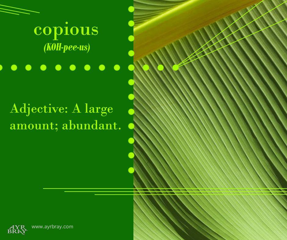 Copious Definition