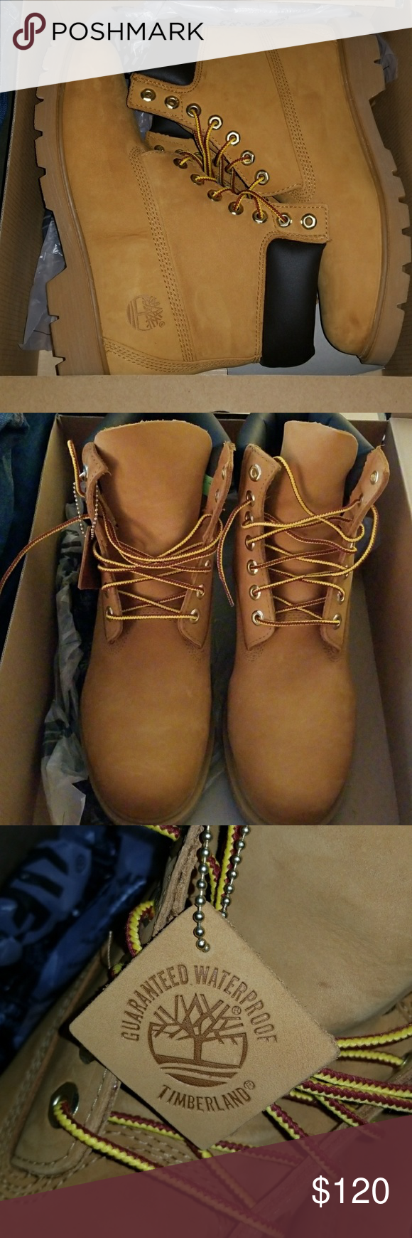 Timberland 6 inch boots Men's never worn with box and tag. Size 9. 6 inch boot Timberland Shoes Boots