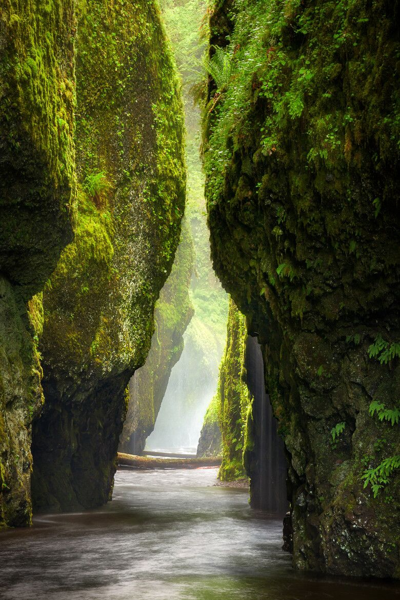 Oneonta gorge, Oregon Looks like the most amazing place ever!! Can't choose between this or the stairway to Heaven in Hawaii as my Next vacation