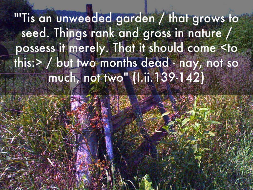 Act I Scene Ii 139 Hamlet Ti An Unweeded Garden That Grow To Seed Seeds 1 2 King Claudiu Speech Analysis