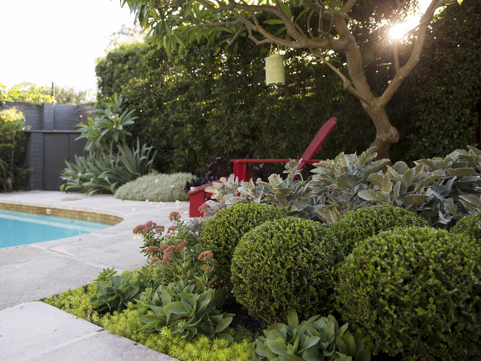 This North East Facing Garden Had An Existing Retro Style Pool