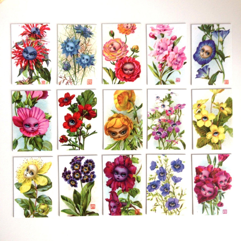 printable alice Enters the Beatiful Garden alice In Wonderland