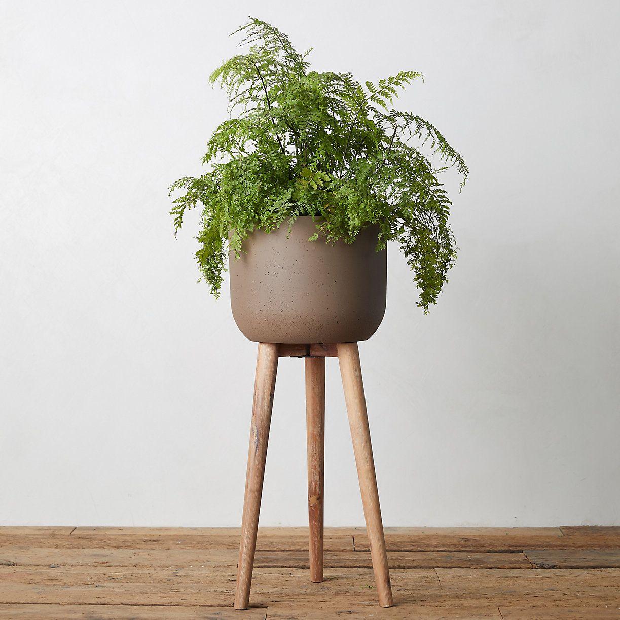 Wood Leg Fiber Stone Pot Terrain Large Plant Pots Wood Legs