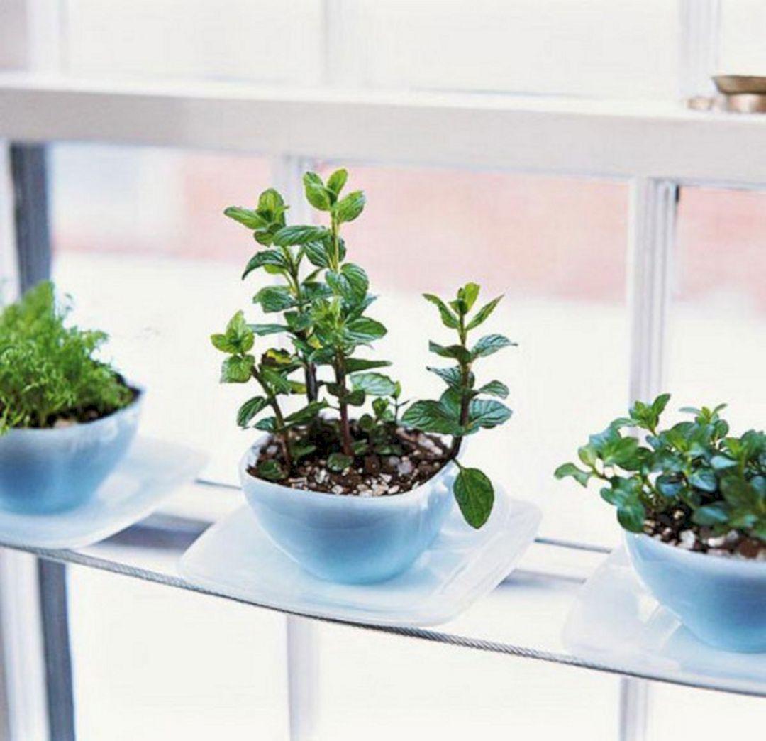 24 Easy Indoor Herb Garden For Beginners Indoor 400 x 300