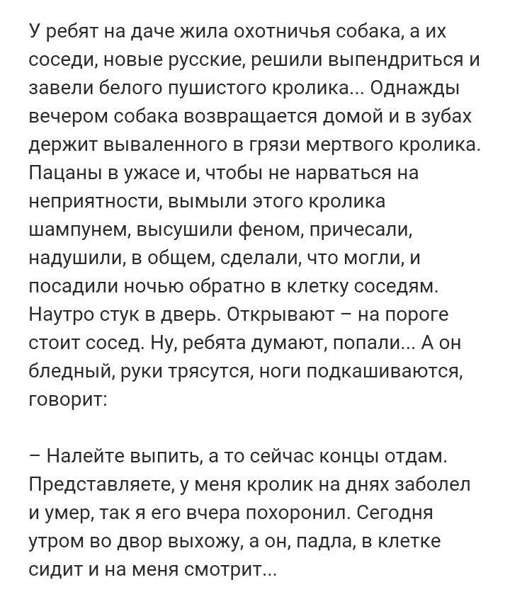 Pin Ot Polzovatelya Asya Andreeva Na Doske Prikoly Samye Smeshnye Citaty Smeshnye Pogovorki Citaty