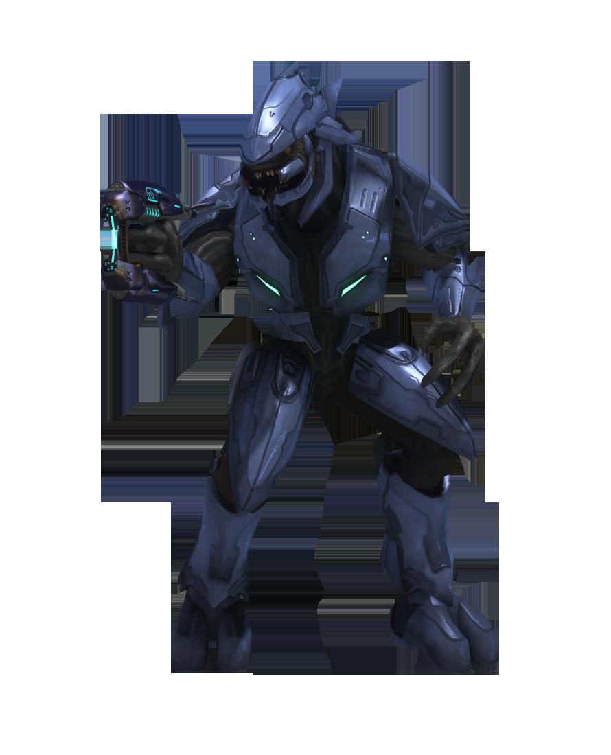 Halo 3 Elite Minor Halo Halo 3 Darth