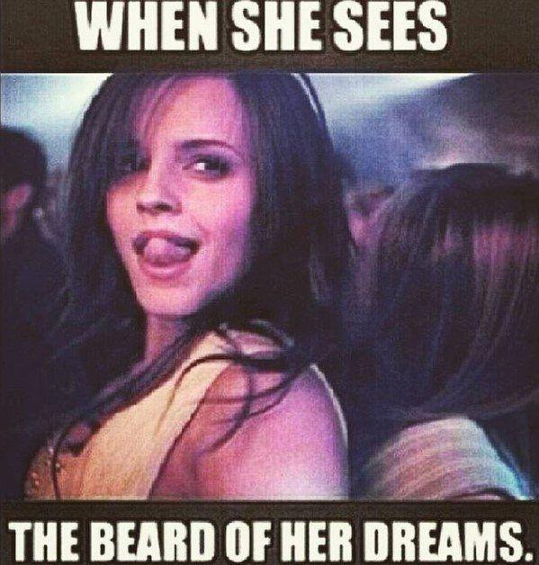 101 Best Beard Funny Images Beard Beard Humor Beard Memes