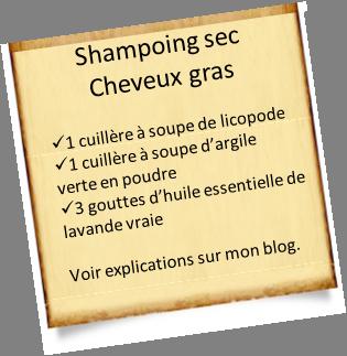 shampoing cheveux gras astuces