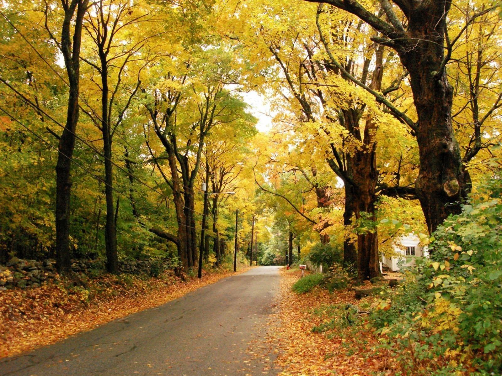 Desktop Autumn Nature Wallpapers Free · November MonthHello ...