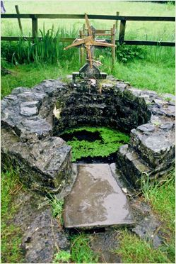 Ireland. St. Brigid's Well, Liscannor