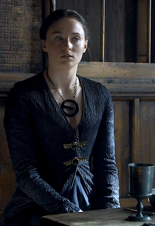 Sansa Costume Journey Game Of Thrones Dress Game Of Thrones Game Of Thrones Sansa