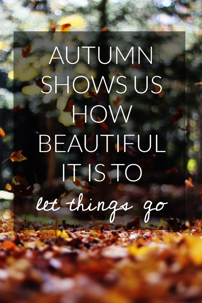 Merveilleux Autumn Quotes   Autumn Shows Us How Beautiful It Is To Let Things Go.