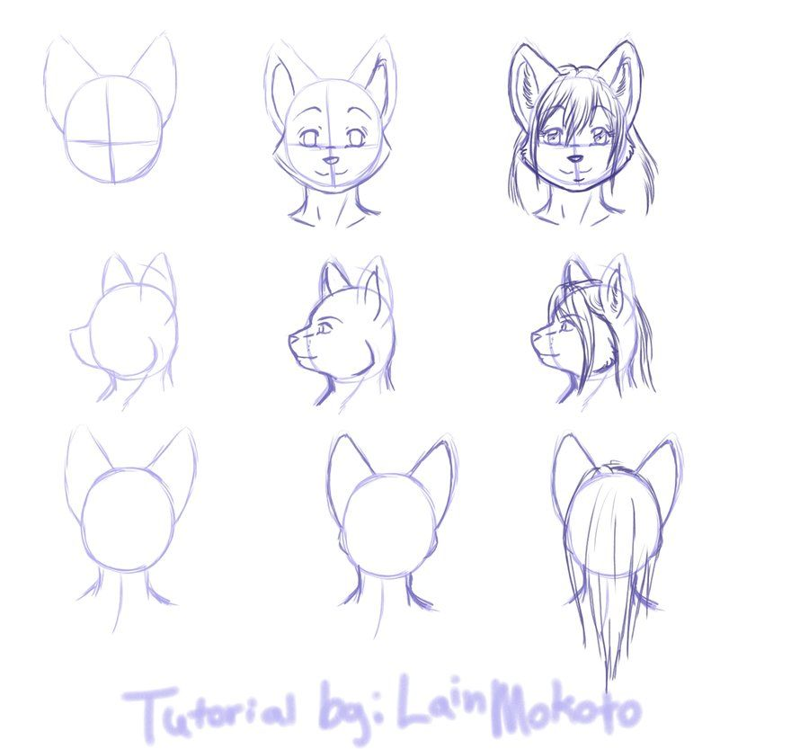 How To Draw Anthro Bodies Google Search With Images Furry