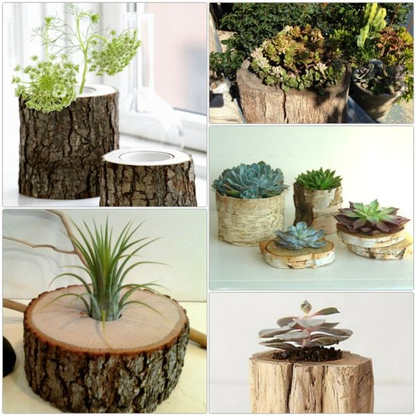 Photo of DIY projects: tree trunk decoration in the form of flower pots