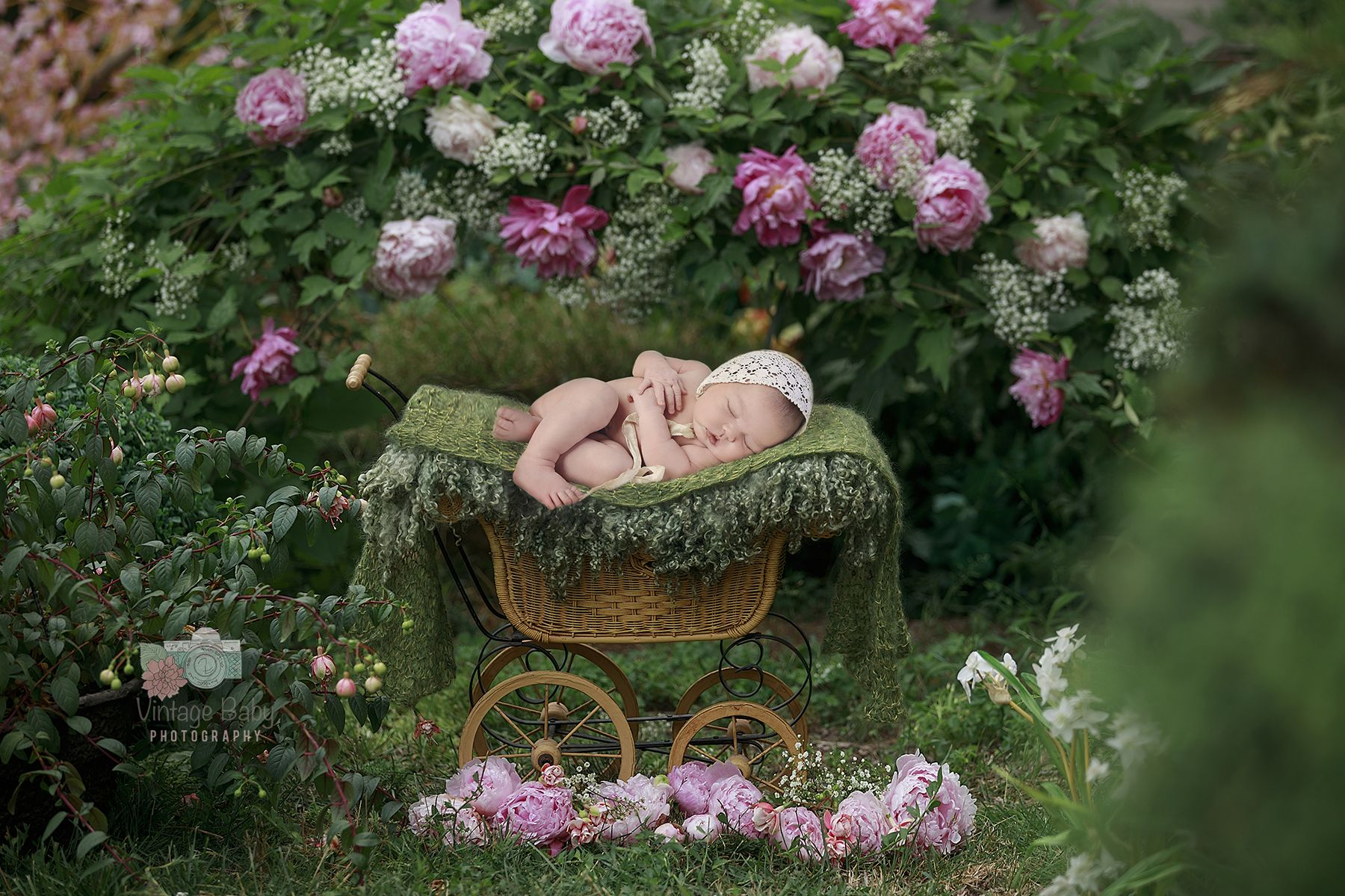 Vintage babyzimmer ~ Baby in buggy newborn photograhy vintage baby photography