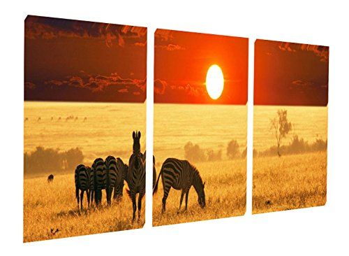 Gardenia Art  Harmonious Grassland Zebra and Sunset Scene Canvas Prints Wall Art Stretched and Framed Modern Decor Paintings Artwork for Living Room and Bedroom 16x16 in 3 pcsset *** Details can be found by clicking on the image.