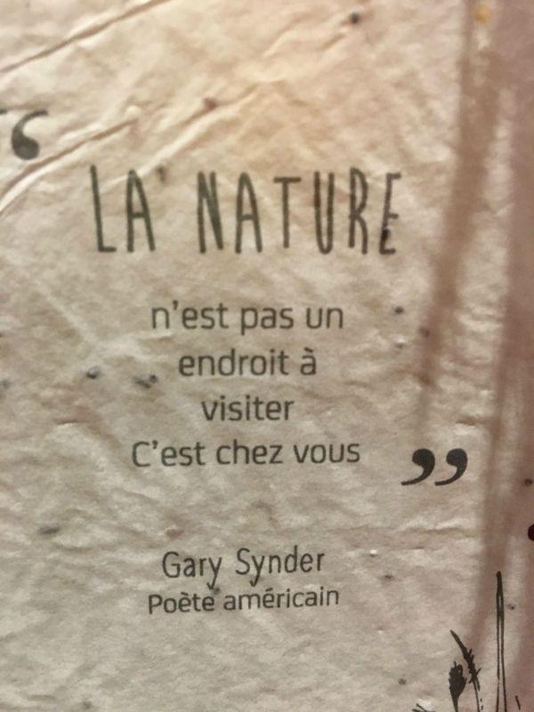 La nature n'est pas un endroit à visiter  c'est chez vous  Gary Synder (Poète américian)