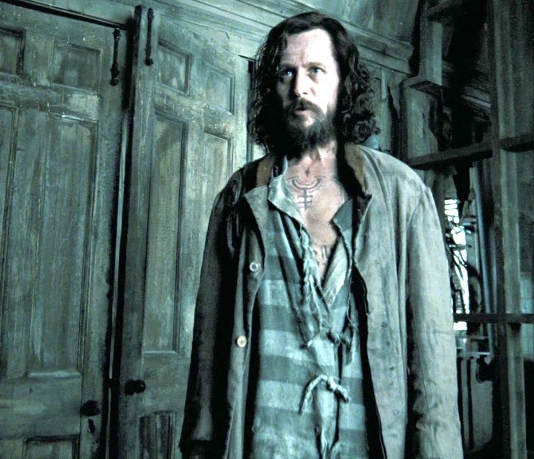 Sirius Black Harry Potter And The Prisoner Of Azkaban 2004 Harry Potter Characters Sirius Black Harry Potter