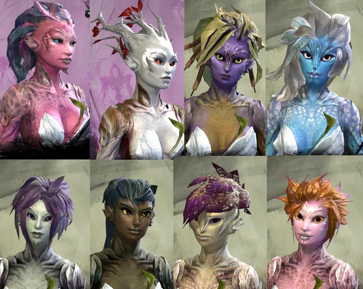 Pin By M Payson On Terra Sallies In 2020 Guild Wars Guild Wars 2 Alien Concept Art