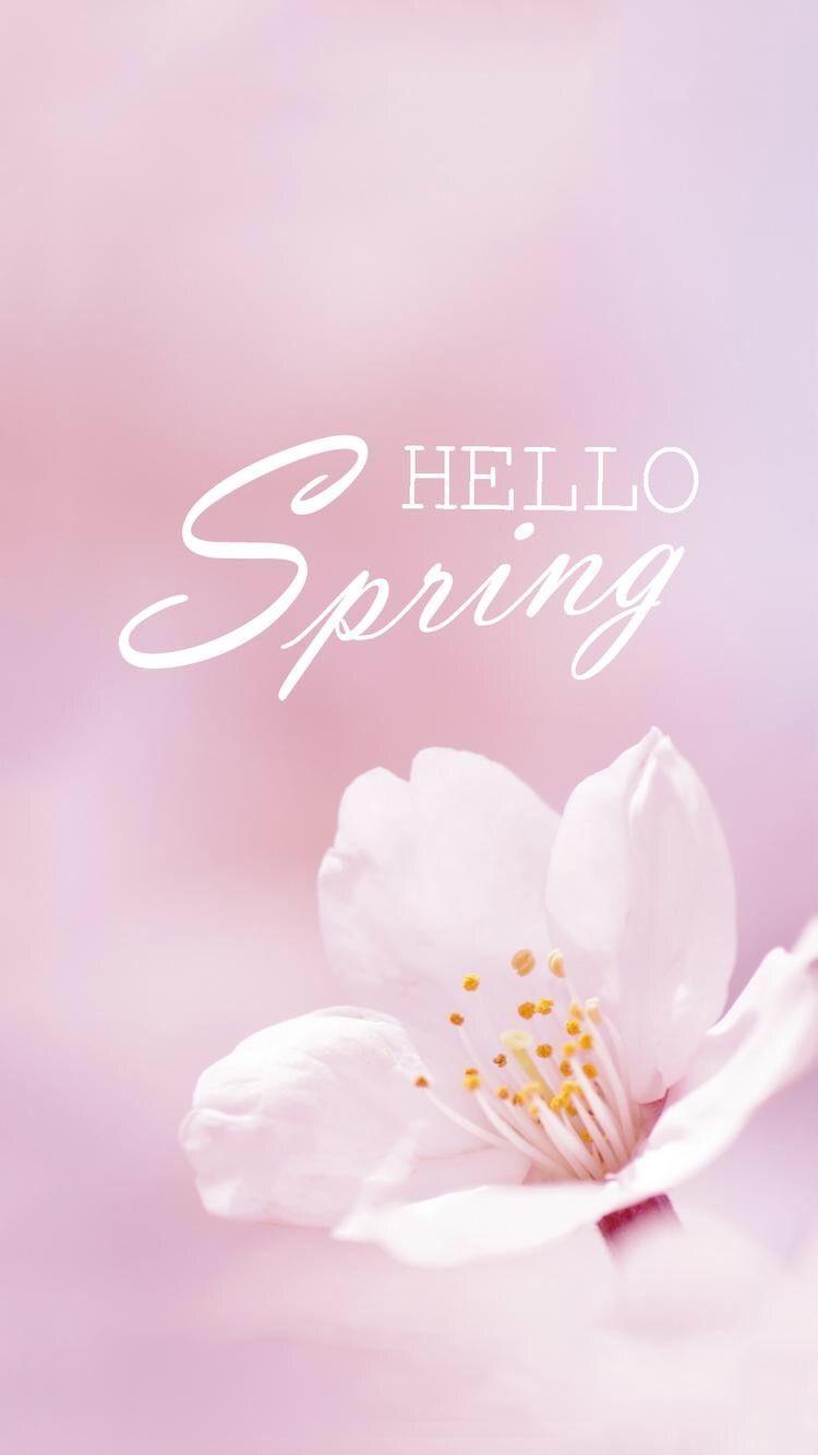 Spring Hello Spring Wallpaper Spring Wallpaper Hello Spring