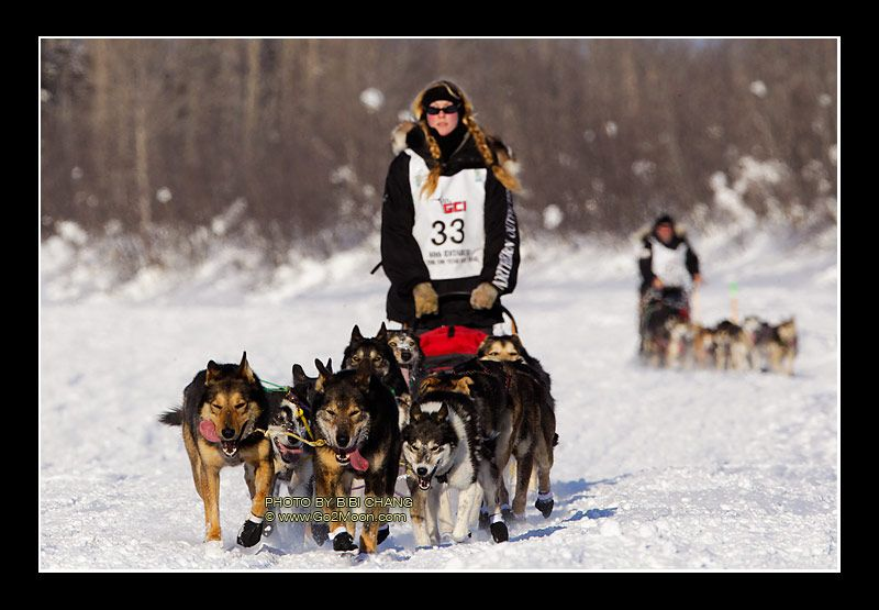 Idiarod Images Anna Berington Leads Her Dog Team Down The Frozen