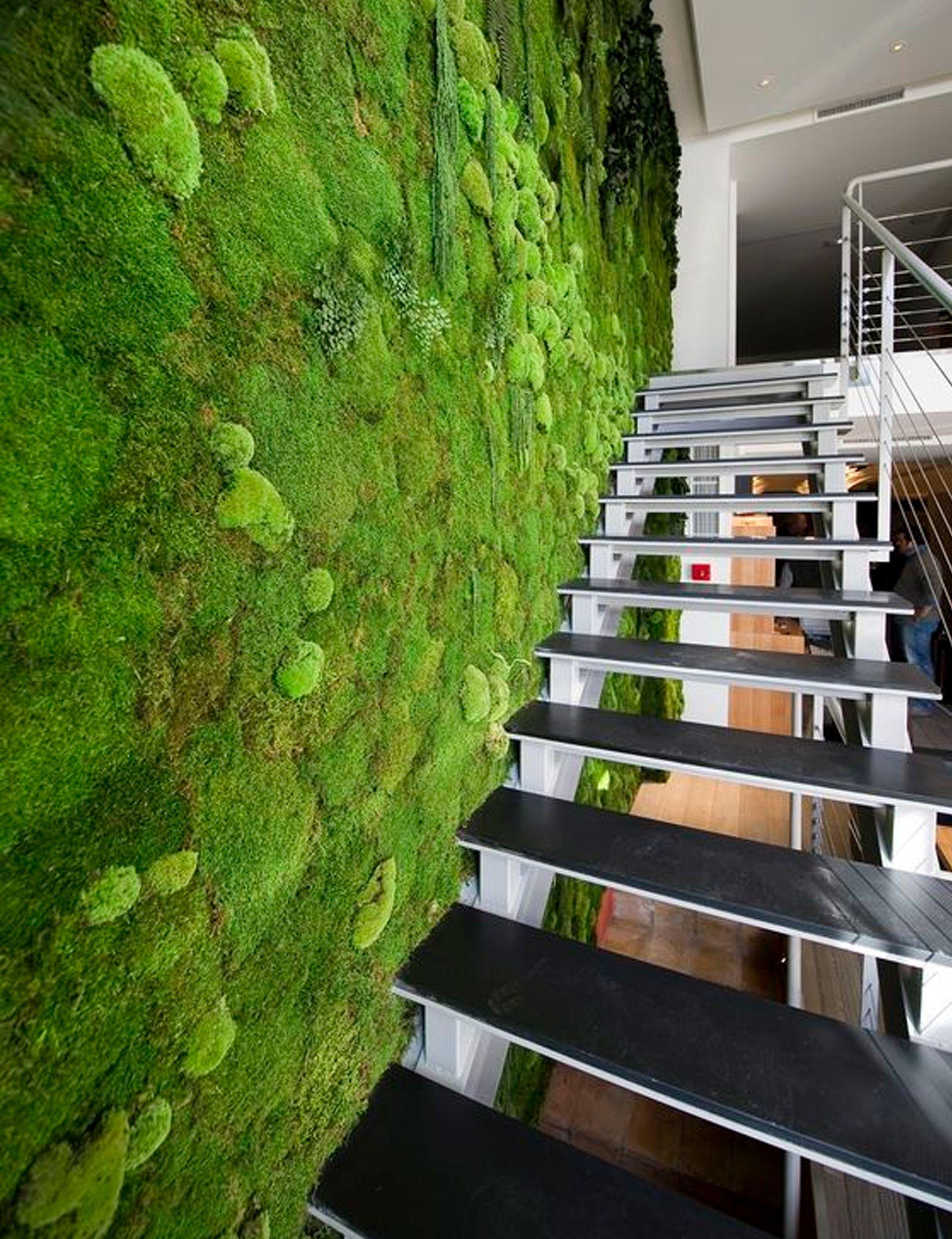 moss – nature\'s trendiest creation
