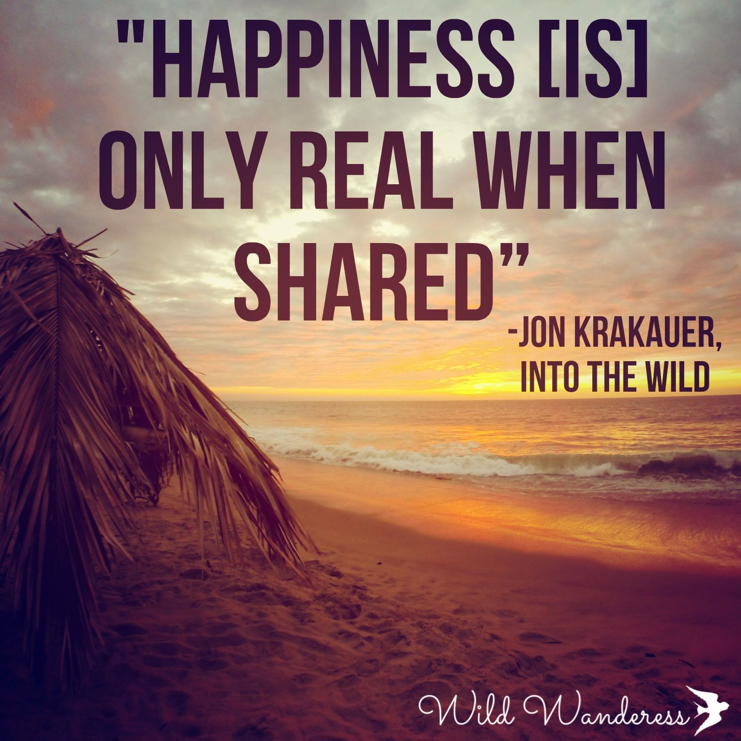 into the wild quotes Into the wild: final paragraph chris mccandless, the skeleton in the bus, was a selfish human, killed by the desire for freedom alex supertramp, chris' alter-ego, was and is thought of as a self-absorbed being.