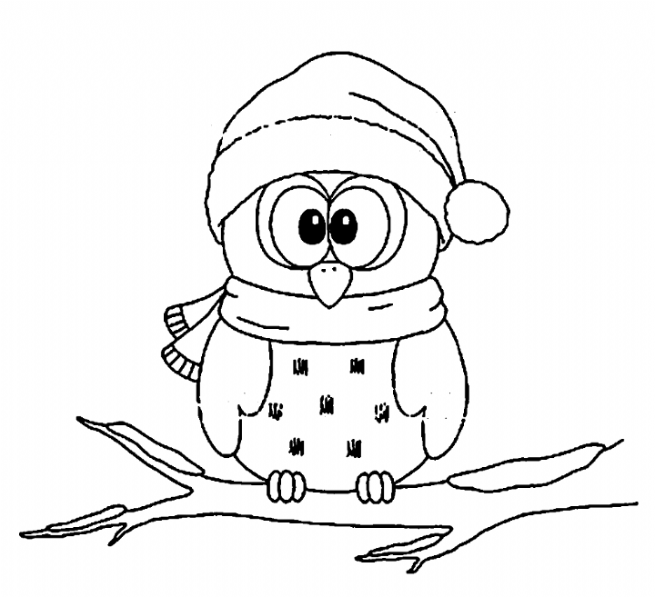 Pin By Fabiola Grcr On Christmas Owl In 2020 Owl Coloring Pages Christmas Coloring Pages Christmas Owls