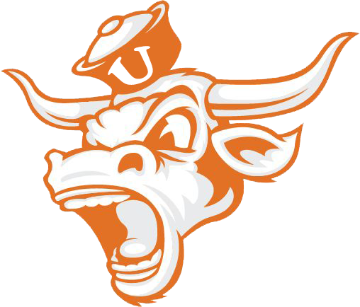 Pin by BLACK Program on Football Bulls in 2020 Texas