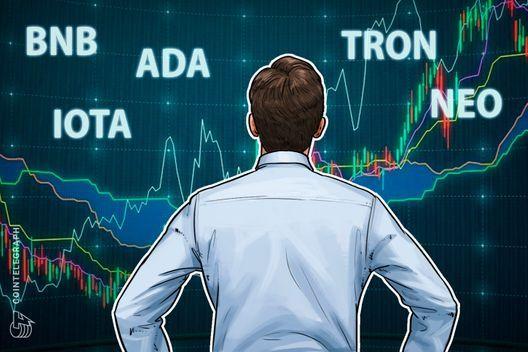 Top 5 Crypto Performers Overview: Binance Coin Cardano IOTA