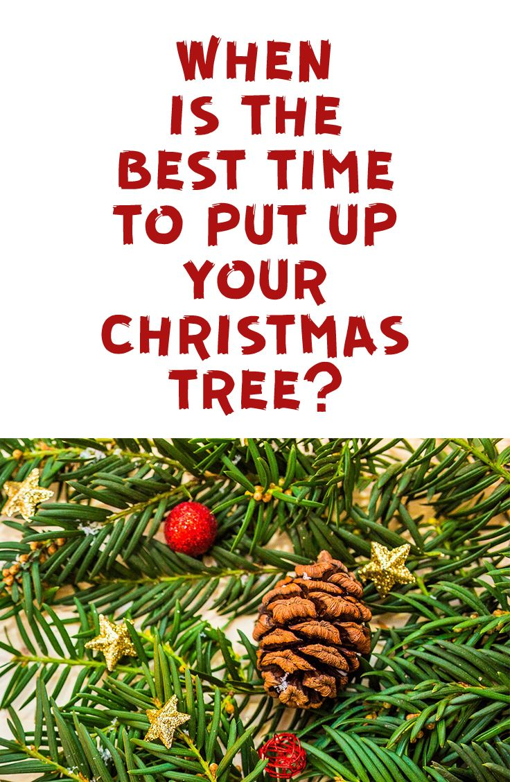 when is the best time to put your christmas tree and christmas decorations up